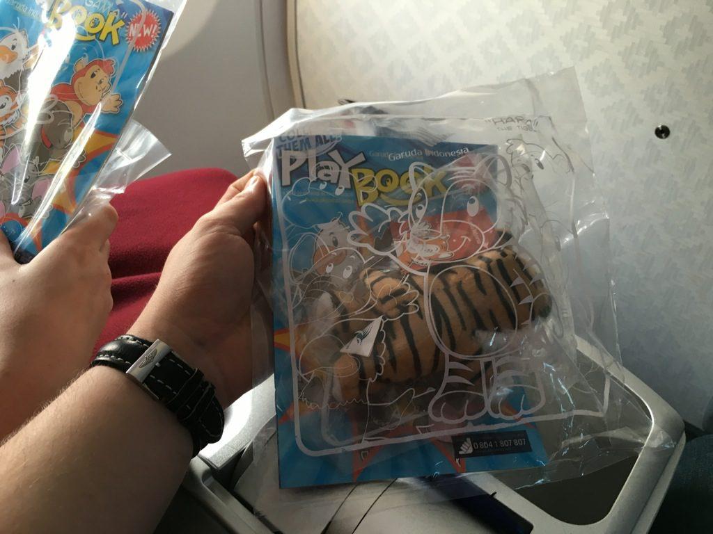 garuda_indonesia_business_class_boeing_737-40