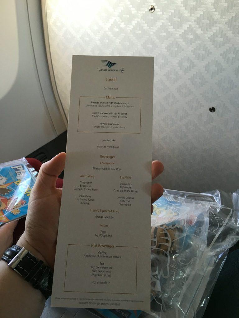 garuda_indonesia_business_class_boeing_737-41