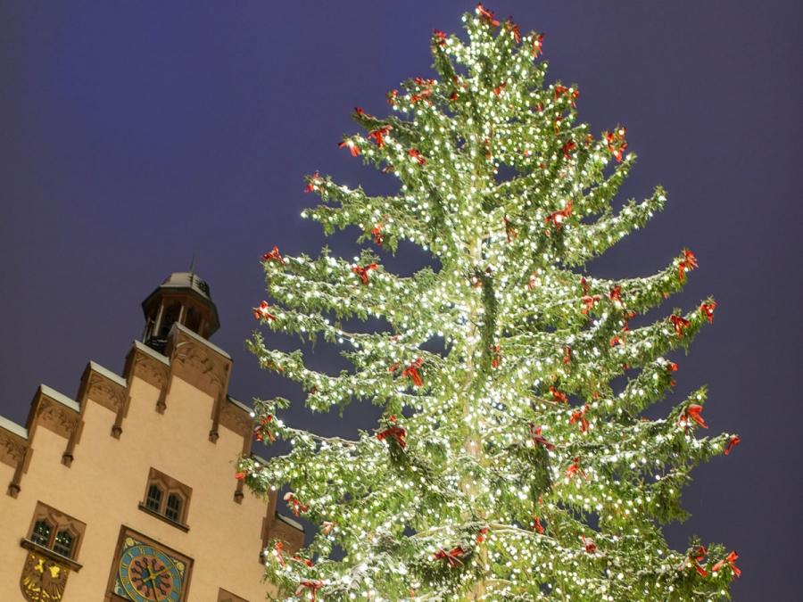 Weihnachtsbaum Frankfurt.Frankfurtflyer Stammtisch Weihnachtsmarkt Frankfurt Am 22 12 2018