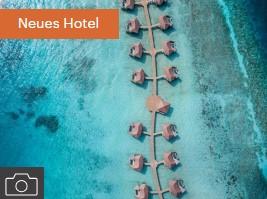 IC Malediven